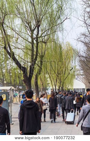 People And Green Trees On Tiananmen Square