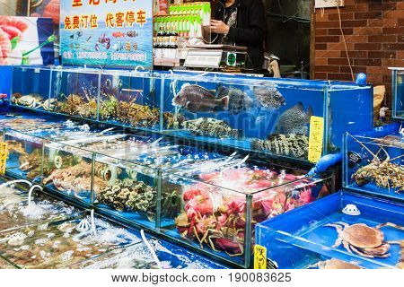 In Fish Market In Guangzhou City