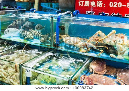 Various Crabs And Prawns Fish Market In Guangzhou