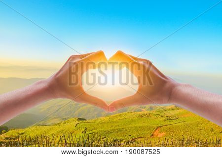 Female hands in form of heart against sunlight in sunset sky twilight time. Hands in shape of love heart Love concept.