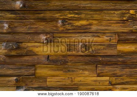 Texture Background of Wooden Log or Plank as Panel Pattern