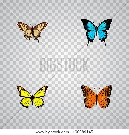 Realistic Papilio Ulysses, Archippus, Danaus Plexippus And Other Vector Elements. Set Of Beauty Realistic Symbols Also Includes Yellow, Monarch, Bluewing Objects.