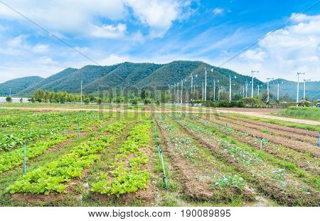 Chang Hua Mun Royal Initiative Project Windmills alternative and sustainability of energy from nature with farm land at Phetchaburi provinceThailand