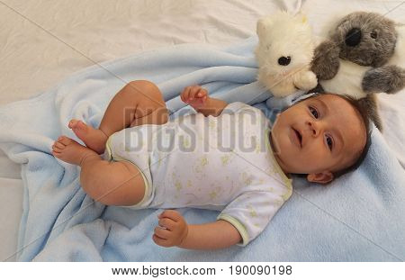two months old baby boy surrounded by toys, koala and puppy