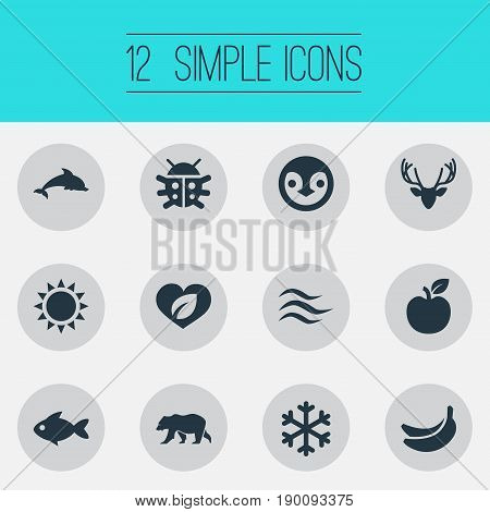 Vector Illustration Set Of Simple Nature Icons. Elements Aquatic Wildlife, Air, Winter And Other Synonyms Wave, Fish And Luck.