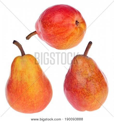 three red bartlett pears isolated on white background