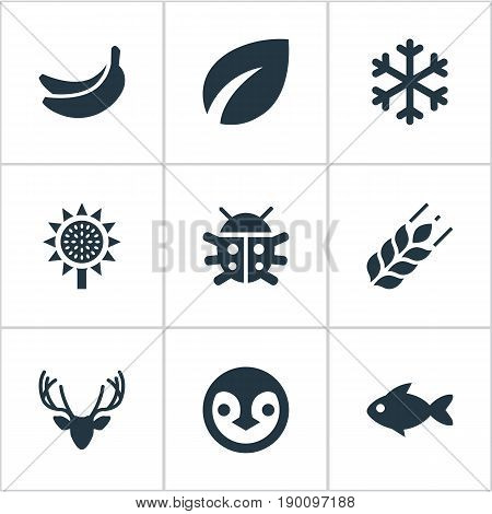 Vector Illustration Set Of Simple Geo Icons. Elements Aquatic Wildlife, Moose, Grain And Other Synonyms Ladybug, Leafage And Particle.