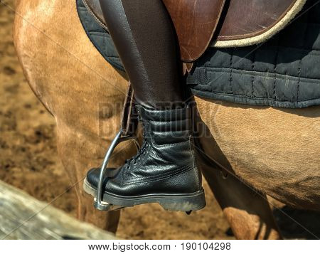 Young cheerful girl rides on a brown horse. Riding training. Horseback Riding. Stirrups close-up.