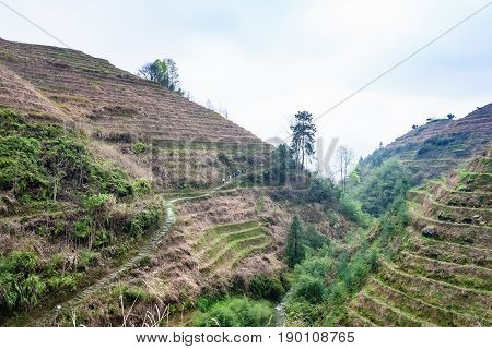 Terraced Slope Of Hills Near Dazhai Village