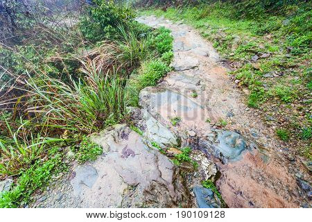 Wet Pathway On Terraced Hill In Dazhai