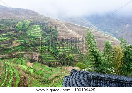 View From Tiantouzhai Village Terraced Fields