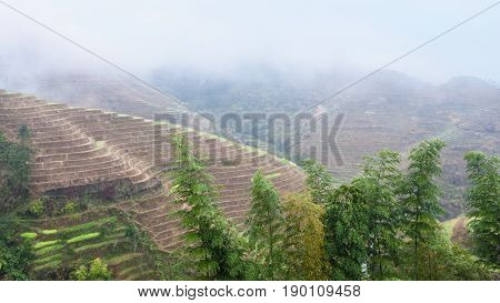 View Of Hills With Terraced Rice Fields Over Haze