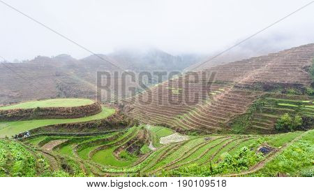 Above View Of Terraced Rice Fields On Hills