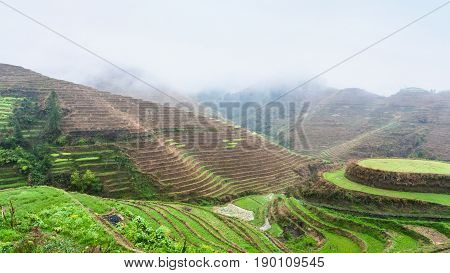Above View Of Terraced Rice Grounds On Hills