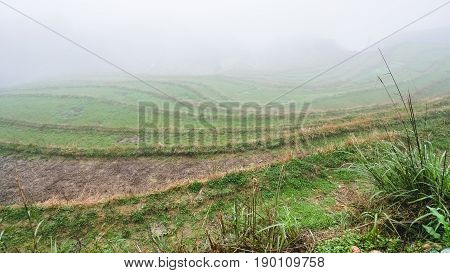 Fog Over Rice Terraced Gardens
