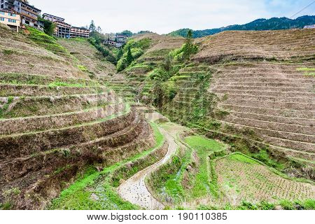 View Of Terraced Area In Dazhai Village In Country