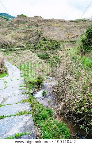 Water Flow And Path Between Terraced Hills