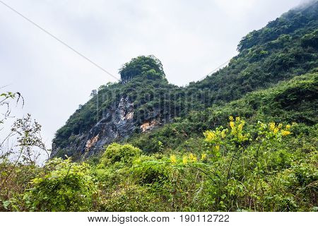 Overgrown Rock Of Karst Mountain In Yangshuo