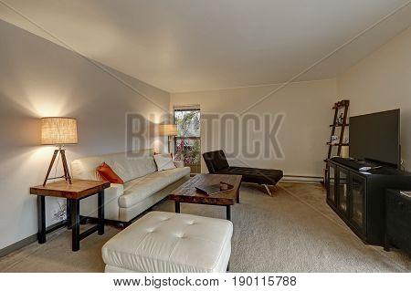 Apartment Living Room Interior Boasts White Leather Sofa