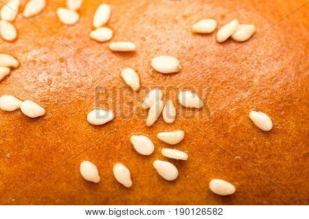 sesame seeds on a bun as a backdrop. macro