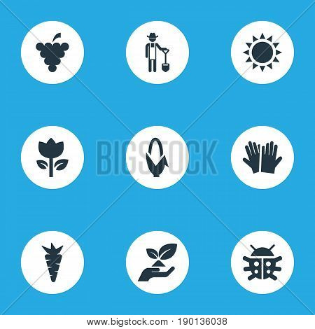 Vector Illustration Set Of Simple Gardening Icons. Elements Blossom, Root, Horticultural Gauntlet And Other Synonyms Vegetable, Beetle And Flower.