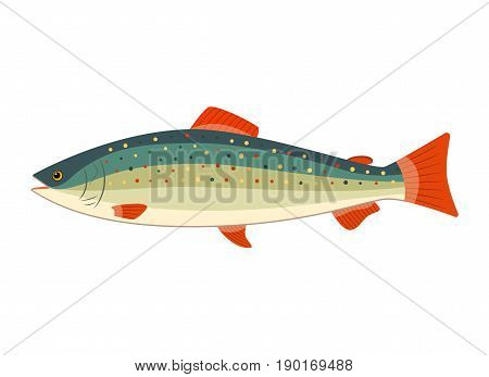 rainbow trout or salmon icon. illustration in flat style