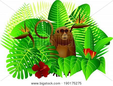 Tropical Rain Forest Jungle Plants with Leaves Flowers and Monkey Isolated on White Background Color Illustration