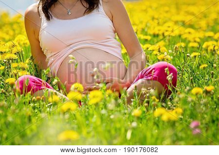 Young Pregnant Woman, Sitting In A Dandelion Field