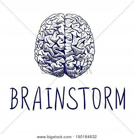 BRAINSTORM. Handwritten letters and outline drawing of human brain. Blue lines on white background