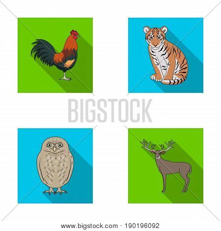 Rooster, tiger, deer, owl and other animals.Animals set collection icons in flat style vector symbol stock illustration .