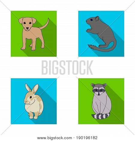 Puppy, rodent, rabbit and other animal species.Animals set collection icons in flat style vector symbol stock illustration .
