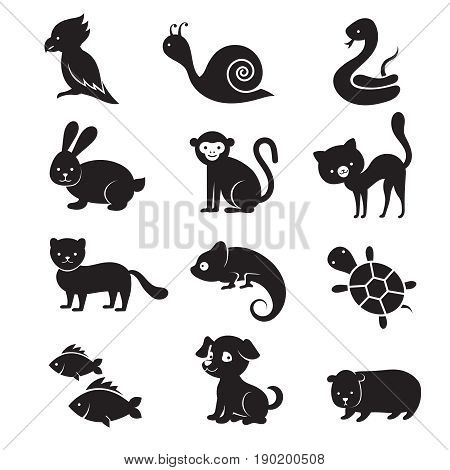 Pets and home animals vector icons. Dog and cat animal, home turtle and snake illustration