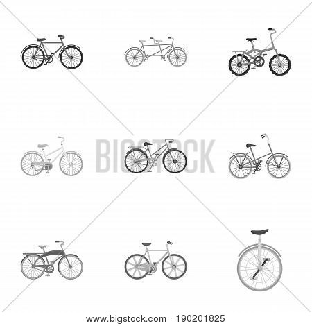 Collection of bikes with different wheels and frames. Different bikes for sport and walks.Different bicycle icon in set collection on monochrome style vector symbol stock  illustration.