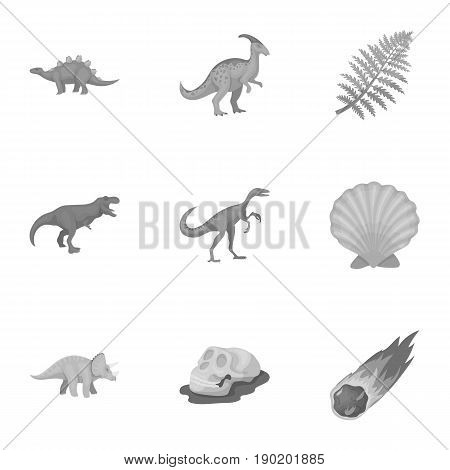 Ancient extinct animals and their tracks and remains. Dinosaurs, tyrannosaurs, pnictosaurs.Dinisaurs and prehistorical icon in set collection on monochrome style vector symbol stock  illustration.
