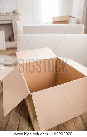 Close-up View Of Empty Open Cardboard Box Ready For Packing, Relocation Concept