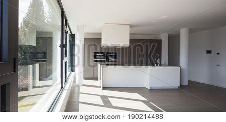 Modern minimalist kitchen, no body inside