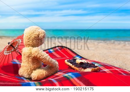 Teddy bear sitting at the beach with blanket, sunshade and sweet jam on bread roll to enjoy breakfast