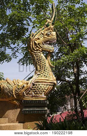Nongkhai serpent wat holly Thailand golden  wat