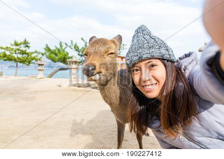 Woman taking selfie with deer in Itsukushima