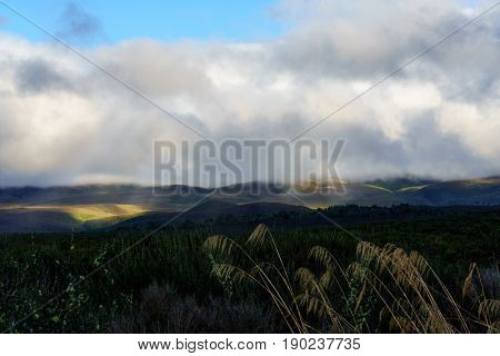 Beautiful sunrays in countryside of Taupo Taupo North Island of New Zealand