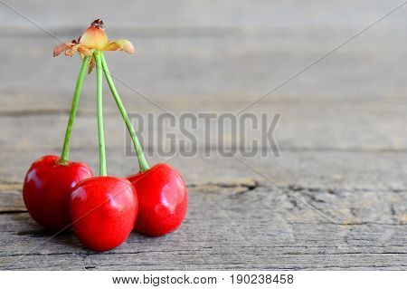 Three mellow sweet cherries isolated on a vintage wooden background with empty space for text. Summer fruity background