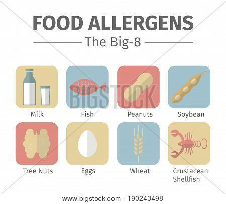 A group of the eight major allergenic foods is often referred to as the Big-8. Vector