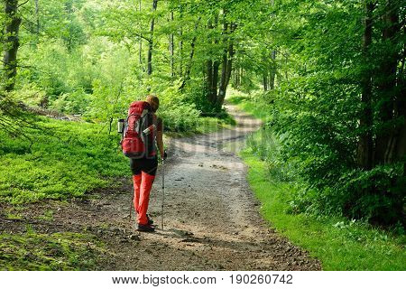 Hikings along tourist trails in the mountains Beskid in Poland with the backpack on the back
