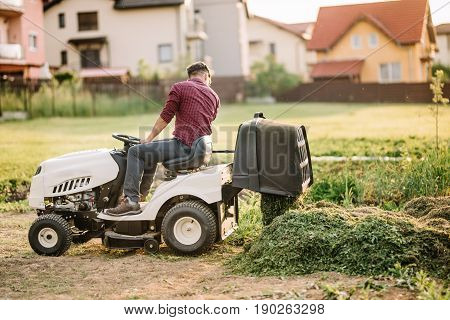 Professional Gardner Unloading Cut Grass From Containter. Worker Using Machinery For Landscaping
