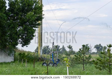 Irrigation System Watering In The Garden. Watering The Seedlings In The Park. Watering The Fields. S