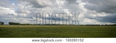 panoramic landscape with storm clouds over the green grass field. panorama shot