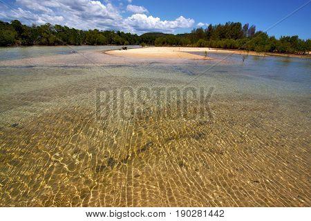 In The  Blue Lagoon  Iranja