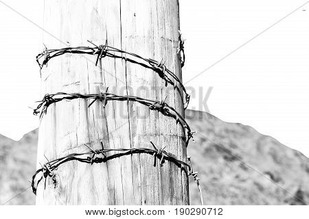 In Oman Barbwire In The  Background