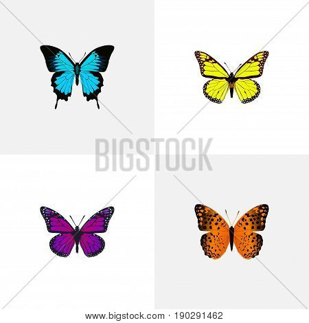 Realistic Archippus, Papilio Ulysses, Danaus Plexippus And Other Vector Elements. Set Of Butterfly Realistic Symbols Also Includes Yellow, Bluewing, Blue Objects.