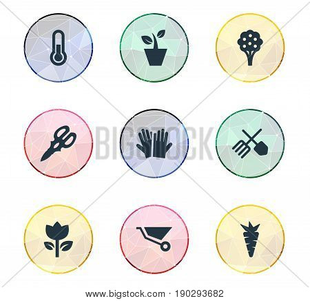 Vector Illustration Set Of Simple Horticulture Icons. Elements Blossom, Apple Timber, Horticulture Equipment And Other Synonyms Shear, Fahrenheit And Root.